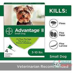 Advantage II 4-Dose Flea Treatment
