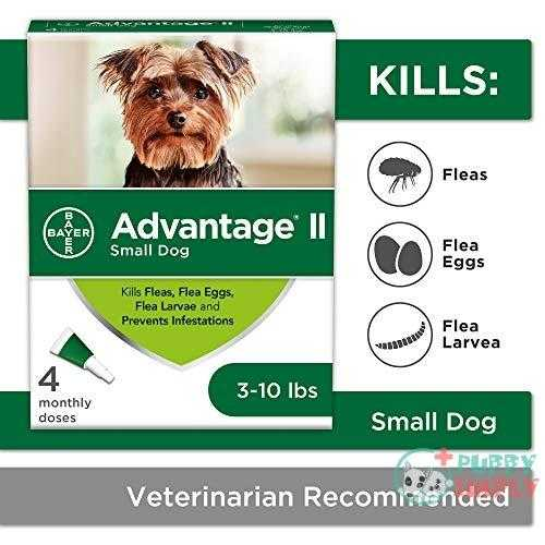 Bayer Advantage II Topical Flea