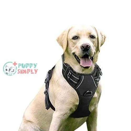 Rabbitgoo Dog Harness No-Pull Pet