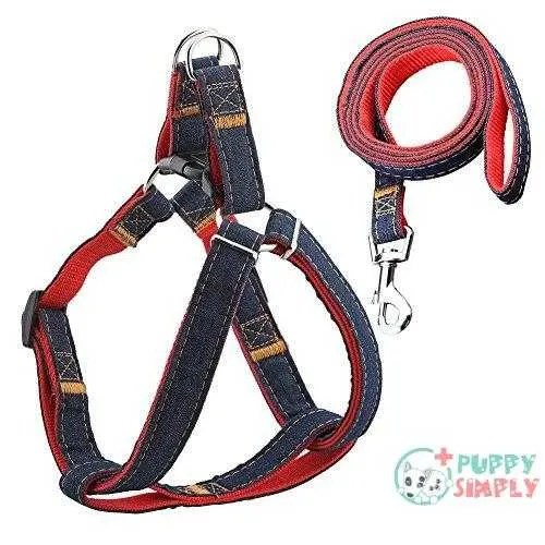 URPOWER Dog Leash Harness Adjustable
