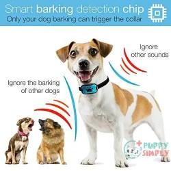 DogRook Dog Bark Collar- Humane Anti Barking Training Collar