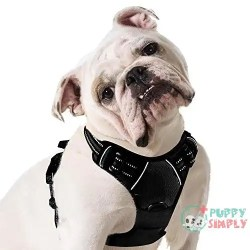Eagloo Dog Harness No Pull, Image