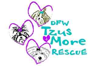 DFW Tzus and More Rescue