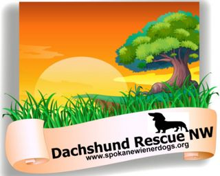 Dachshund Rescue NW and Dachshund Club of Spokane