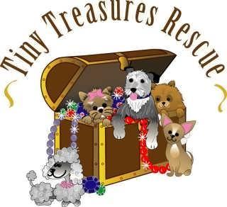 Tiny Treasures Rescue