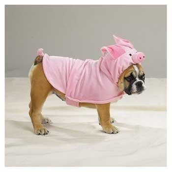 dog halloween costume pig costume