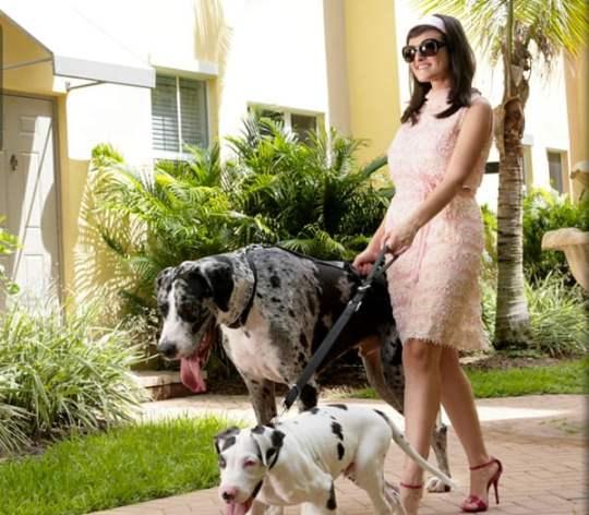 woman-walking-dogs-large-neighborhood-glamorous
