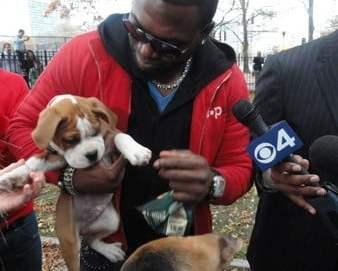 David Ortiz holding puppy