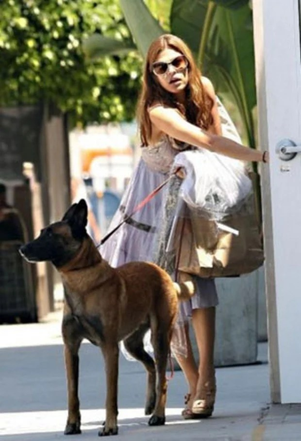 celebrities_dogs_1