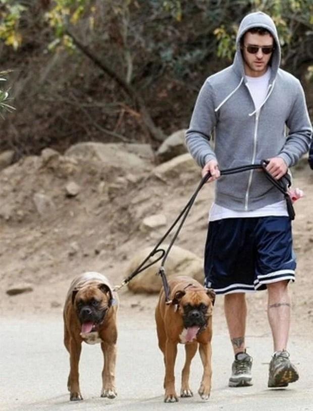 celebrities_dogs_12