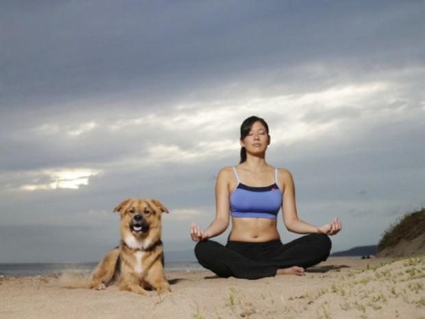 dog_yoga_12
