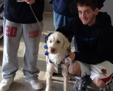 Long Island Comes Together To Find Missing Dog