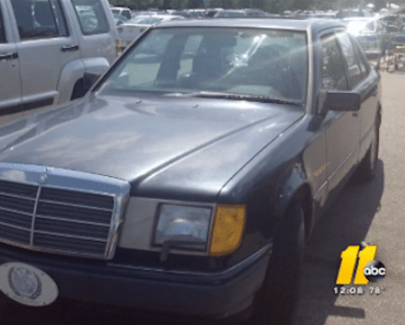 Woman Charged With Animal Cruelty After Dogs Die in Hot Car