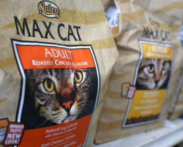 Pet Store Owner in Washington Lives on Dog and Cat Food for 30 Days