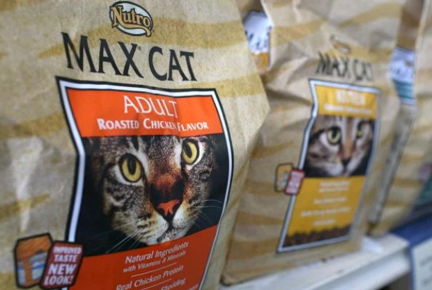 Major Pet Food Manufacturer Nutro Products, Recalls Its Dried Cat Food