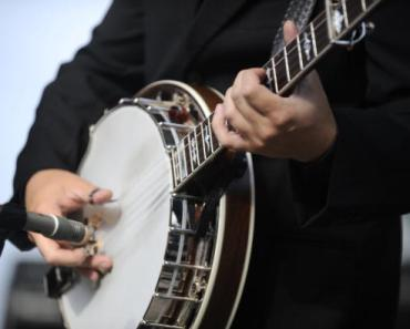 The Cutest Video of Dogs Playing Bluegrass!