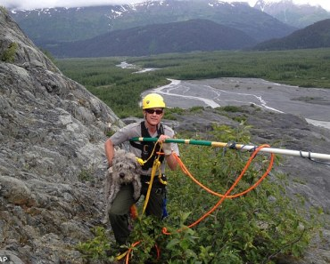 A Ranger in Alaska Saves a Dog from a Cliff Near Glacier