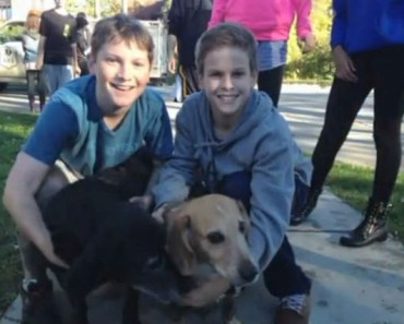 Grade Students Band Together to Save a Dog that was Stuck in the Mud