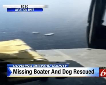 missing-man-dog-boat