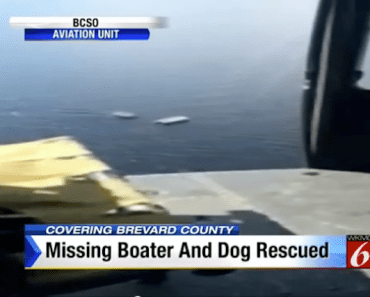 missing-man-dog-boat
