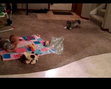 baby and pooch