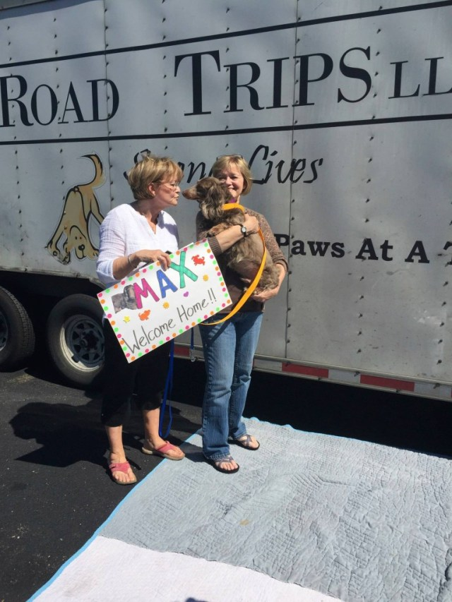 Greg Mahle's rescue dogs meet their families