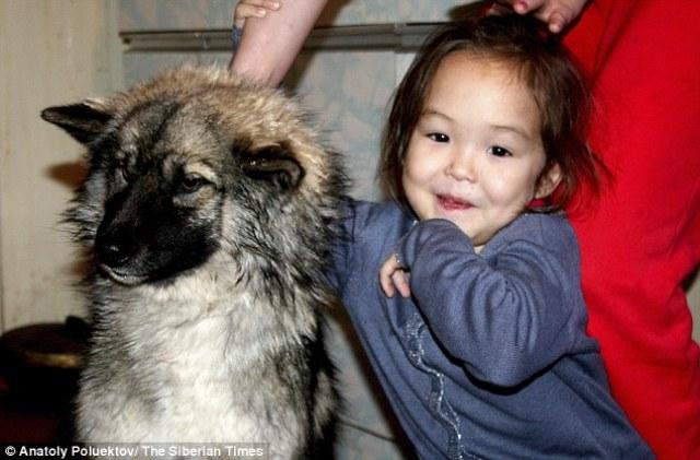 dog that saved girls' life
