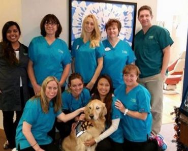 Dental Office Hires Golden Retriever to Calm Patients