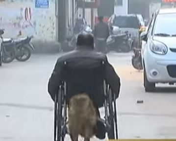 Dog Uses His Head to Push His Owner's Wheelchair Around