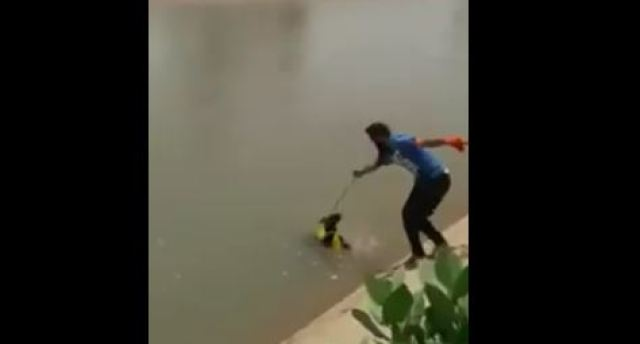 man saving puppy