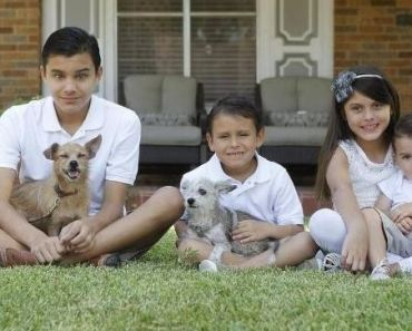 Family Adopts Homeless Dog Found with Their Missing Dog