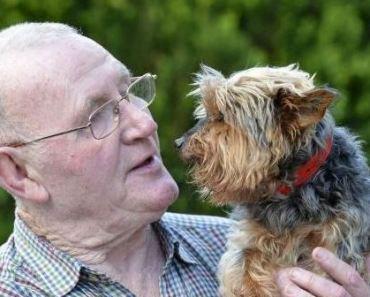 Oldest Dog in the United Kingdom Dies in Tragic Attack