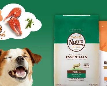 Nutro Dog Food