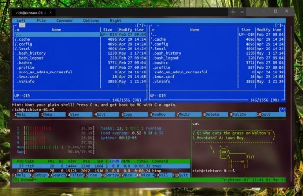 Janela do Windows Terminal
