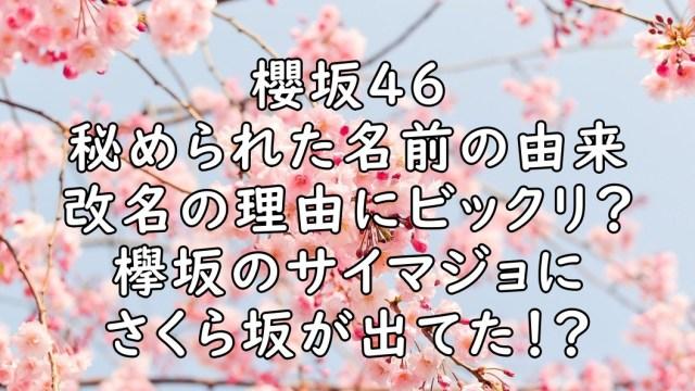 櫻坂46 名前 由来 改名 理由 画像