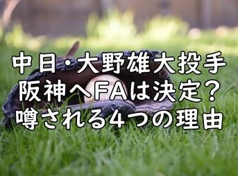 大野雄大 阪神 FA 画像
