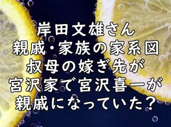岸田文雄 家系図 画像