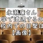 永瀬廉 大学 遭遇 目撃 画像