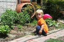 eli-gardener