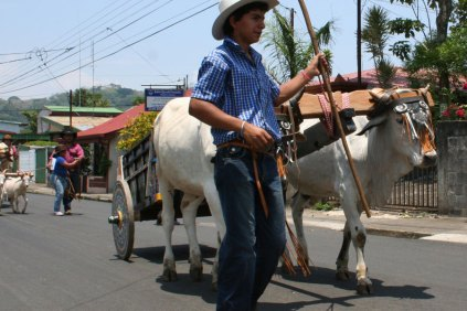 costa-rica-ox-cart-parade-atenas-10