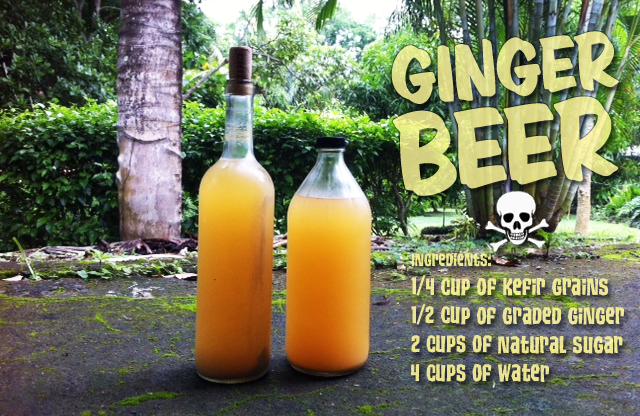 How to Make Ginger Beer - Recipe