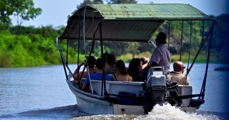 Discount: Boat Estuary Tour (Tamarindo)