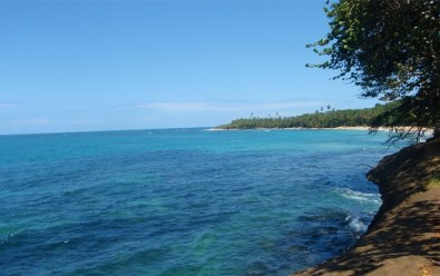 Punta Uva sea kayak tour and rainforest hike