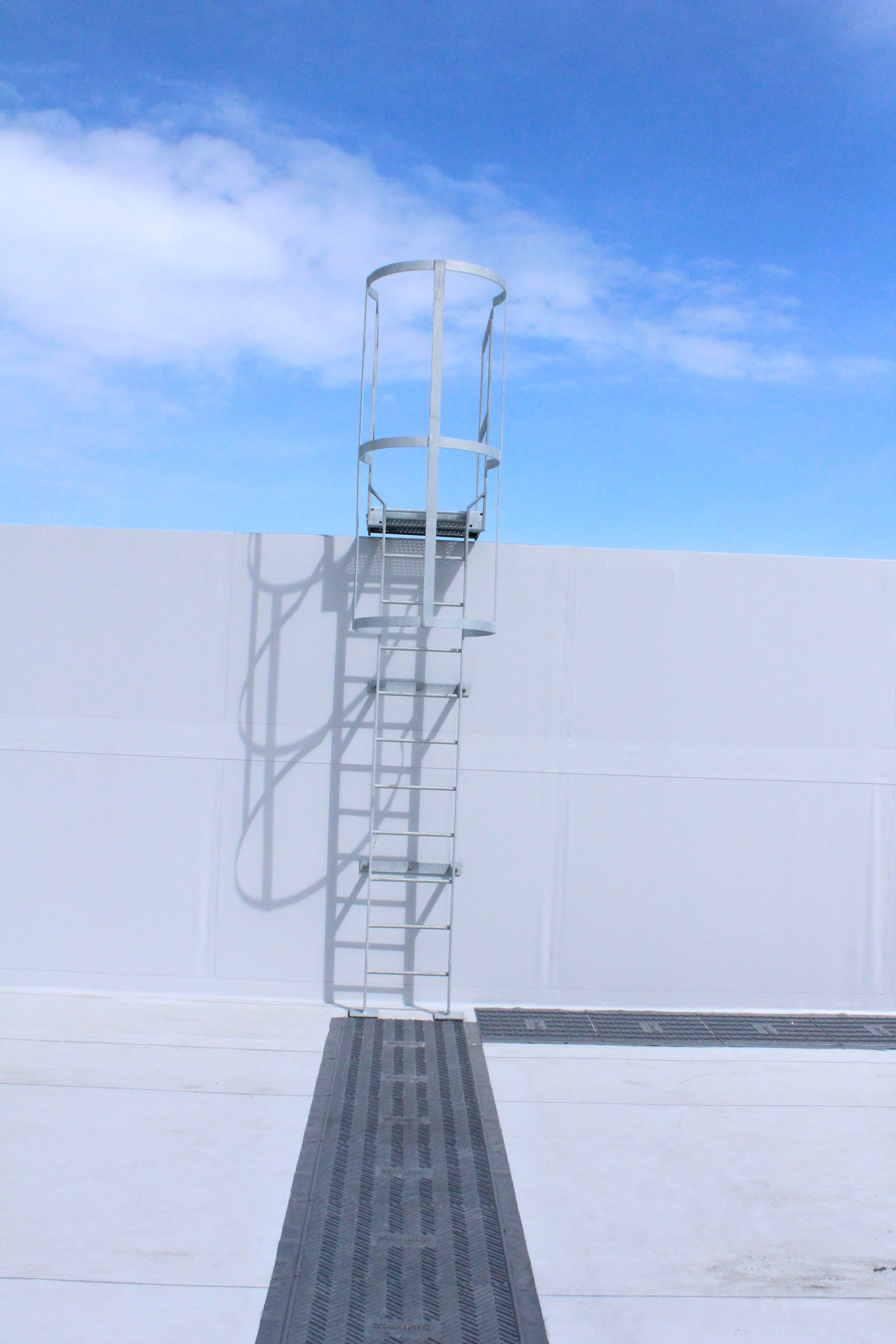 Mild steel galvanised safety ladder with safety cage
