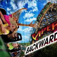 Experience Viper Backwards This Summer at Six Flags Great America