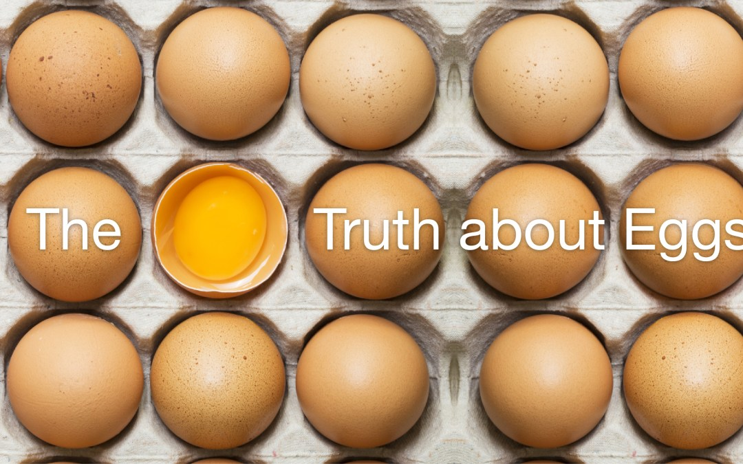 The Truth About Eggs