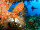 Pure Diving Grenada & Carriacou DiveFest