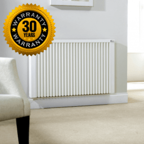 EcoFlow German electric radiators