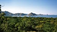 Komodo landscape – Pure Flores Tours