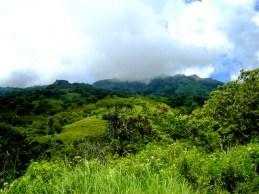 Landscape – Pure Flores Tours